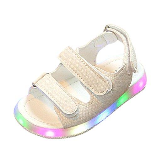 Turnschuhe Baby Kimodo (1-6 Jahre Alt) Neu Kleinkind Kinder Sport Sommer Jungen Mädchen Baby Sandalen LED Leucht Schuhe Turnschuhe (EU:20(Asian:21), Weiß)