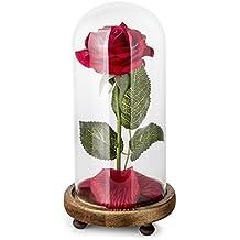 """""""La bella e la Bestia"""" Red petali di rosa di seta e luce a LED con Fallen in vetro a cupola su base di legno"""