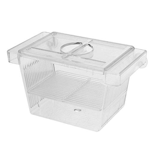 perfk Ablaichbehälter Aquarium Zuchttanks Fisch Brutkasten Inkubator Box Klein