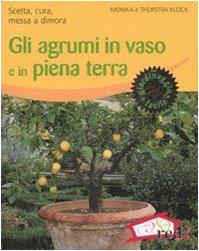 gli-agrumi-in-vaso-e-in-piena-terra-scelta-cura-messa-a-dimora