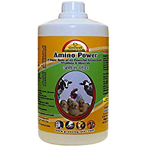 Growel Amino Power- Poultry, Cow, Bird, Goat, Pig and Horse Supplement – 500ml