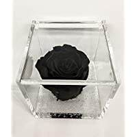 Cubo Rosa stabilizzata nera 8cm, profumata è una vera e propria Rosa che dura anche piu di 5 anni