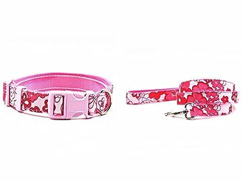 Yuver(TM) New dseign Nylon dog collar leash
