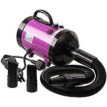Ananapa Profesional Perros Cuidado secador 2800 W Low Noise Secador de Pelo para Perros y Gatos