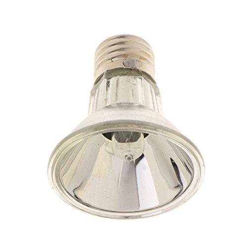 FITYLE 220V E27 Vollspektrum Tageslichtlampe UVA UVB Glühbirne Wärmestrahler für Terrarium Reptilien Pflanzen - Silber, 100W