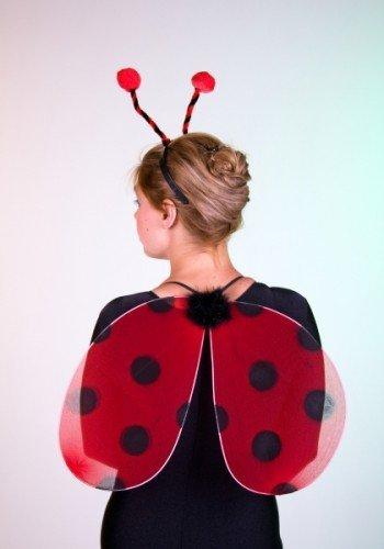 Marienkäferset: Flügel, Kopfbügel mit Fühler