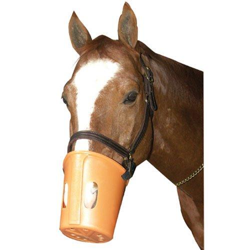 Intrepid International Bozal de plástico para caballo
