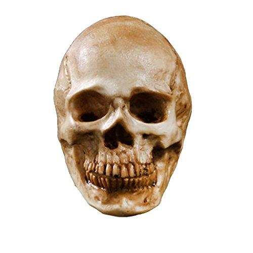 -Figur Menschliche Skelett Kopf Dekor Antik Gelb ()