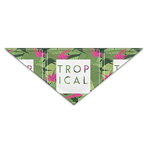 Washable Tropical Palm Leaves Floral Dog Unique and Never Out of Date Bandanas Scarves Triangle Bibs Scarfs Fashion Basic Dogs Neckerchief Cat Collars Pet Costume Accessory Kerchief Holiday Birt Floral Leaf