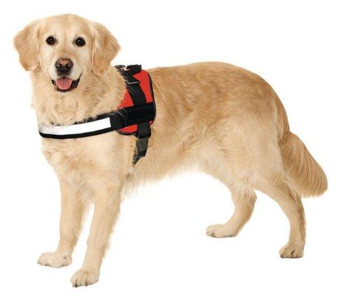 Teflon® Hunde Spezial Geschirr -Slogan-Reflektierend & Adresstube Grösse: XS bis XXL - 2