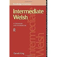 Intermediate Welsh: A Grammar and Workbook (Grammar Workbooks)