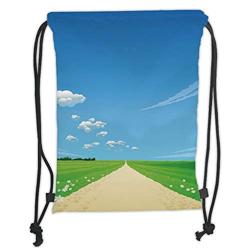 GONIESA Drawstring Sack Backpacks Bags,Nature,Path Road Background with Open Sunny Sky Clouds Daisy Flowers Picture,Sky Blue Green Cream Soft Satin,5 Liter Capacity,Adjustable String Closure,Th -