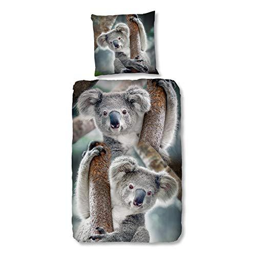 Good Morning Bettwäsche 2492 Koala Bär Motiv 135x200cm Baumwolle