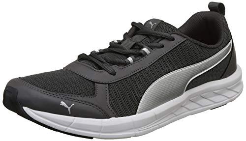 Puma Men's Iron Gate-Silver White Running Shoes-8 UK/India (42 EU)(4060979431652)