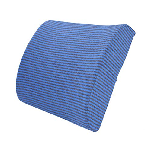 INSN Lordosenstützkissen Memory Foam Rückenstützkissen, Für Nacken- Und Lordosenstütze, Für Zuhause, Büro, Auto, Reise,Blue -