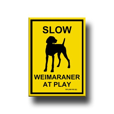 Weimaraner Slow At Play Fridge Magnet -