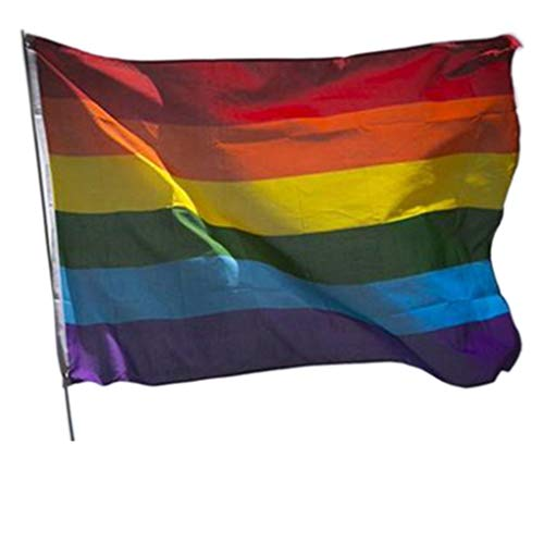 Dpolrs Freundlich Rainbow Flag Bisexual Transgender-Stolz-Fahnen Polyester Regenbogen-FlaggeAls Bild (Schule Freundlich Kostüm)