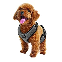 Zellar No Pull Dog Harness, Adjustable Breathable Reflective Soft Padded Dog Vest Harness with Handle for Training Outdoor Activities, Black, Small