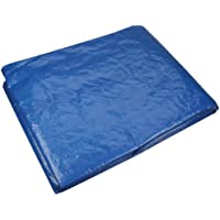Cartrend 70152 Cubierta de 2 x 2 m, 100% impermeable, lavable y con estabilizado UV