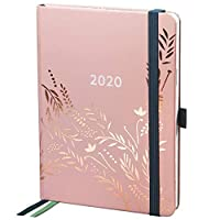 Boxclever Press Everyday 2020 Diary. 12 Month Weekly Planner. Stunning Personal Organiser with Monthly Overview, Budget Tracker and Dotted Notes Pages. Handbag Size. with Pocket - Dusky Pink