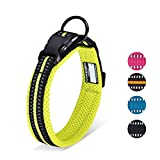 HAPPY HACHI Adjustable Padded Dog Collar Soft Nylon Pet Collar Reflective Safety for Small Medium Large Dogs(XS,Green)