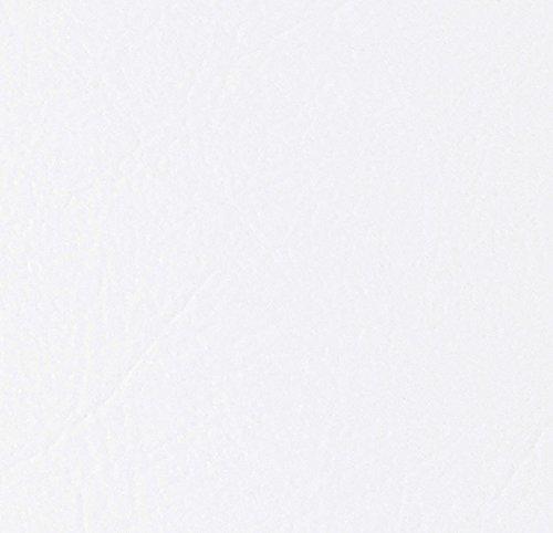 10x A4di Dandy Bianco Brillante in rilievo Perlato con effetto pelle di alta qualità 300G/Mq