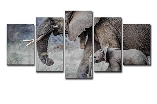 HDWALLART Impresiones De Lienzos Grandes Hd Impreso Elefantes Caminan Tronco Joven Colmillos...