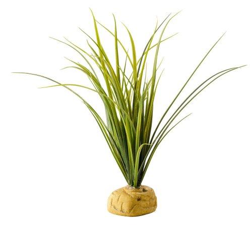 Exo Terra Turtle Grass (Für Terrarien Pflanzen)