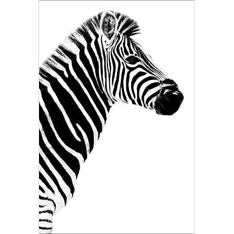 Stampa su tela 20 x 30 cm: Safari Profile Collection - Zebra White Edition III di Philippe HUGONNARD - poster pronti, foto su telaio, foto su vera tela, stampa su tela
