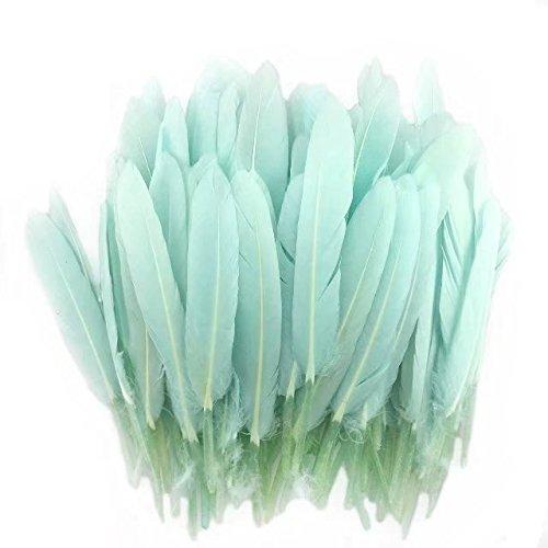 �rbt Home Decor Gänsefedern für Kunst, Home Party oder Hochzeit 15,2–20,3cm Light mint green (Kostüm-verzierungen)