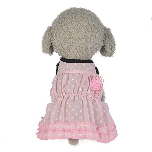 Haustierkleid,Hund Frühling Sommer Chiffon Kamelienrock,Hund Katze-Haustier-Kleid Luftblasen Prinzessin Dress,Schöne Haustier Klein Hund Kleid Weste Rock,Perfekt Zum Wandern,Joggen (Pink, XL) -