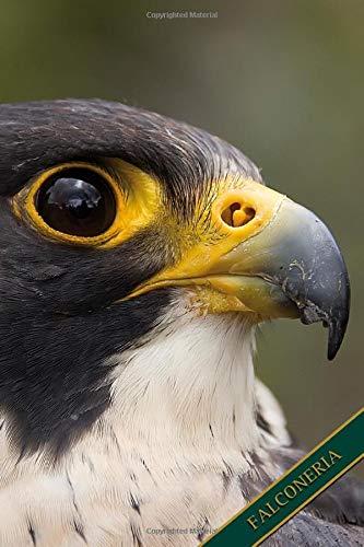 Falconeria: Falco pellegrino. Formato A5, 120 pagine, foderato in grigio discreto. Rubriche quotidiane, appunti e diario, taccuino...