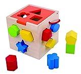 Tooky Toy Motorik-Würfel, 12 Formen - Holz-Spielzeug Steckwürfel Spielwürfel - Kinderspielzeug ab 3 Jahren mit Wasserfarbe - ca. 14 x 14 x 14 cm