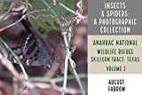 Insects & Arachnids: A Photographic Collection: Anahuac National Wildlife Refuge - Skillern Tract: Anahuac, Texas - Volume 2 (Arthropods of Anahuac: Skillern) (English Edition)