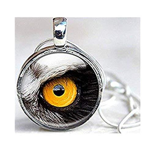 Leonid Meteor Dusche Eule 's Eye Glas Dome Halskette, Birds Eye Foto Bild Halskette Anhänger -