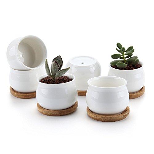 T4U 7CM Keramik Sukkulenten Töpfe Kaktus Pflanze Töpfe Mini Blumentöpfe mit Bambusuntersetzer Trommel Frome Weiß 6er Set (Keramik-trommel)