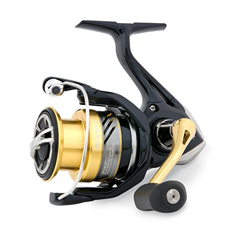Shimano Nasci C3000 FB, Spinning Angelrolle mit Frontbremse, NASC3000FB