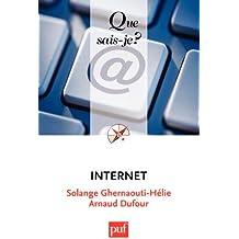Internet: « Que sais-je ? » n° 3073