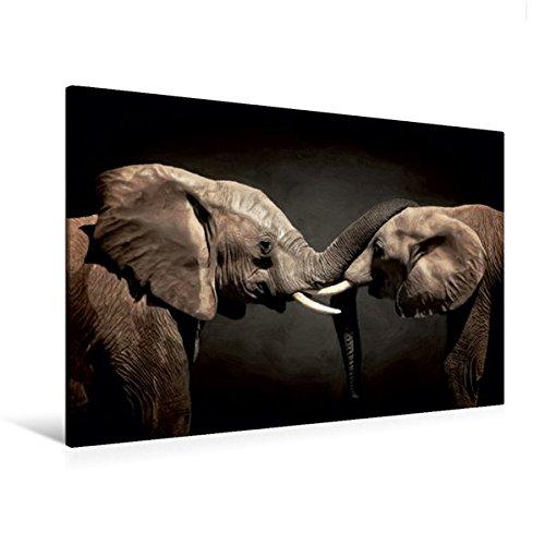Calvendo Premium Textil-Leinwand 120 cm x 80 cm quer, Two Elephants | Wandbild, Bild auf Keilrahmen, Fertigbild auf echter Leinwand, Leinwanddruck: Digitale Malerei und Composing Tiere Tiere