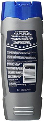 Gillette Dry Skin Hydrator Body Wash (453GM)