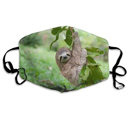Daawqee Mund Maske, Sloth Climbing Tree Adult Fashion Anti Staub Schutzhülle Washable Safety 100% Polyester Comfortable Breathable Health Half Face Masks