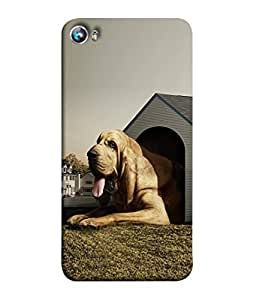 99Sublimation Designer Back Case Cover for Micromax Canvas Fire 4 A107 (Greenish Stagnant Elegantly Meritorious Pyrenees Verify Label Hypocritical Ecstatic Stifle)
