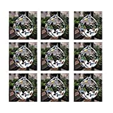 #10: Odishabazaar Feng Shui Hanging Clear Crystal Ball -40MM- Pack Of 9 Pcs