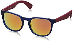 Joe Black Oval Sunglasses (Blue and Purple) (JB-511 C4)