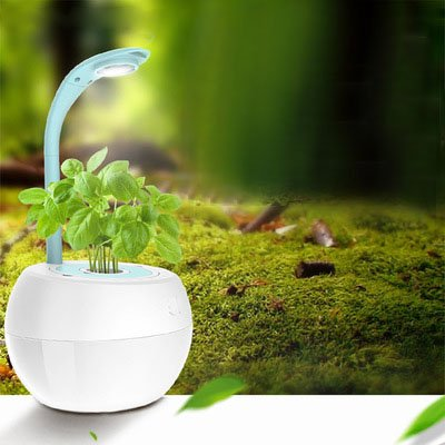 Smart Garden Flor Maceta soilless cultura LED lámpara de escritorio Creative regalo automático Remind táctil regulador
