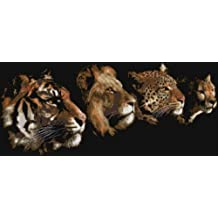 """Cross Stitch Kit 14 Count """"Four Great Cats in a Row"""" 67cm x 33cm"""
