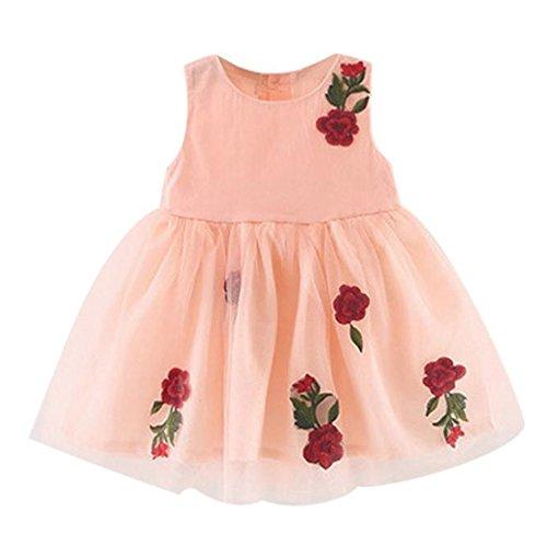 WOCACHI 9-36 Monate Baby Mädchen Sommer Kleider ärmellose Prinzessin Festzug Rose Appliques Kleid (Age:2-3Y, Rosa)