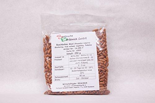 250 g Buschbohne Maxi Gartenbohne Bohnensamen Bohnensaat Samen Saatgut Hülsenfrucht