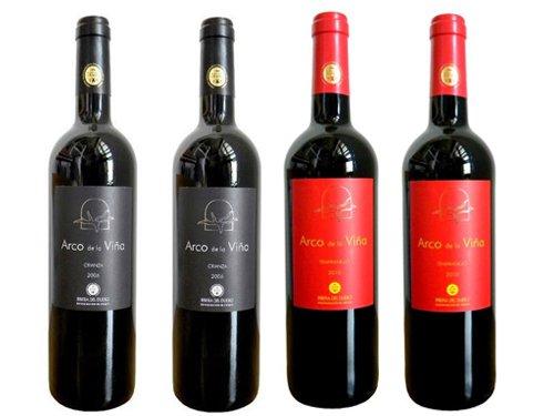 Pack de 12 botellas de Vinos DO española (6 Rioja + 4 Ribera del Duero + 2 Vinos de Castilla) width=