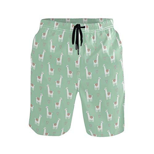 Men's Summer ShortsLlama Candy Cane Hearts Fun Pattern On Mint Green Bac,Size:XL